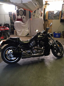 2008 Harley Davidson Vrod / Night Rod.