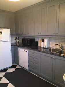 Newly Renovated 2 Bedroom Apt - St Clair & Dufferin