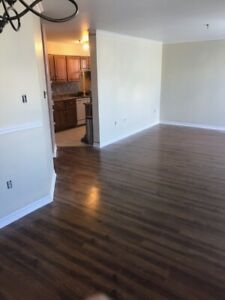 Two Level Suite Available in Clayton Park