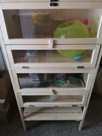 Hamsters And In Belfast Pet Equipment Accessories For Sale Gumtree
