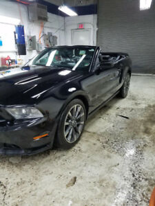 sales sale vice shelby details at inc new mustangs in inventory kenny ladoga for ford mustang