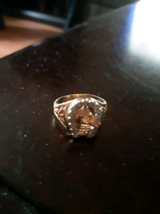 Men's ring for sale 10k 14 diamonds with a horse head on it