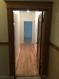 Newly Renovated 5 1/2 in Classic Outremont building (free month)