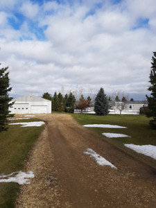 For Rent: Blackfalds Acreage with Shop