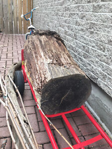 wood free to pick up