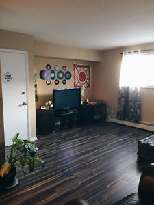 DOG FRIENDLY 6 Donald ave, 664$ heat&hw incl