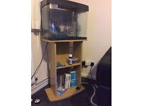 Love fish panorama tank 40 litre in good condition
