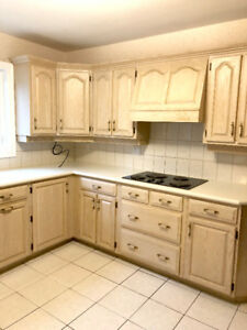 Hardwood Kitchen Cabinets: With Appliances (extra)