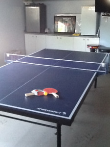 Ping Pong Game easy fold to store