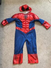 Spider Man dressing up
