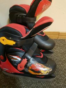 Skate  botes