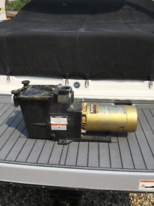 Swimming Pool Pumps for sale