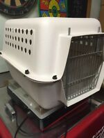 Dog carrier crate clean