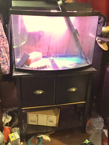 38 gallon bowfront fish tank with accessories