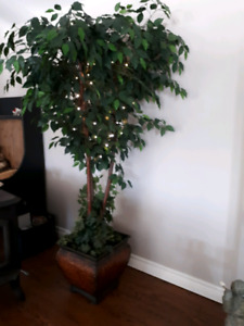 Fake fig tree in planter