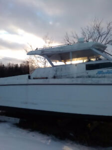 Boat for sale and it does need work just have no time