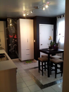 Modern 3br mainfloor- Ave U S -Dog Friendly - Available Now