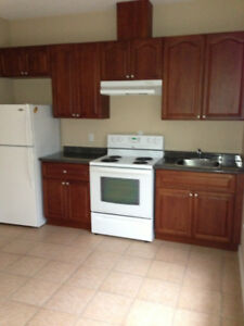 One bedroom Bachelor suite - Available Jan 20