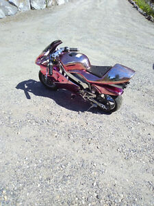 Pocket Bike 49CC Pink chrome