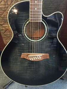 Ibanez 12 string guitar with hard case