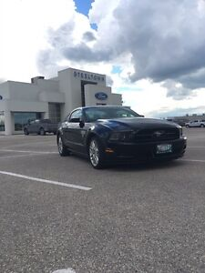 2013 Ford Mustang Premium - Pony package