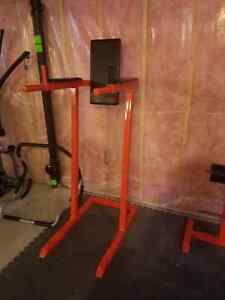 Complete home gym London Ontario image 3