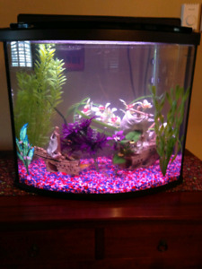 26 gal bow front fish tank and supplies
