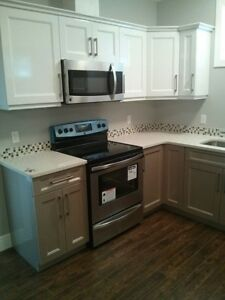 Specious two bedroom basement suite in Parson Creek.