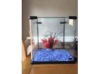 Aquarium for sale- Ideal for beginners