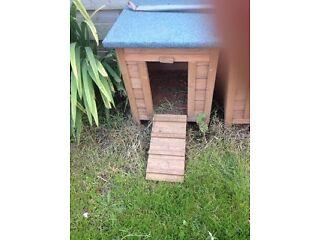 Hedgehog houses/ small animal house
