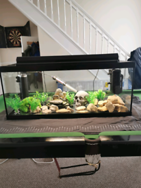 Fish tank and accessories.