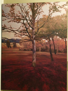 """40x30"""" transfer to canvas poster by Ah Some Art Sarnia Sarnia Area image 1"""
