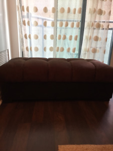 Great Ottoman with STORAGE!