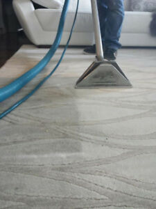 CARPET STEAM CLEANING SERVICES/LOW RATES