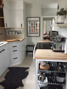 IKEA kitchen islands