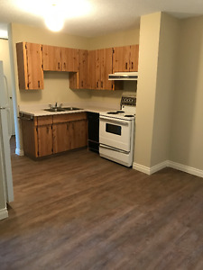 Downtown Oliver 1 bed 1 bath for rent