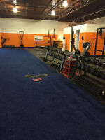 Personal Training at Private Gym