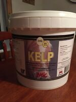 Kelp supplement for horse