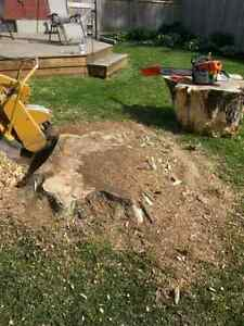Stump Grinding Stratford Kitchener Area image 8