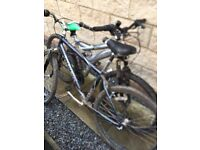 2 x Pair of Mountain Bike Trek £25