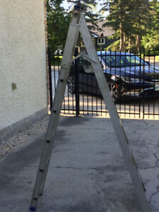 Aluminum combination step/extension ladder