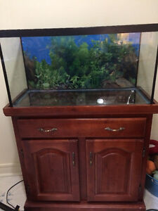 40 gallon aquarium and cabinet with canopy