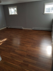 Basement Apartment, Indian Meal Line (close to Torbay Road)