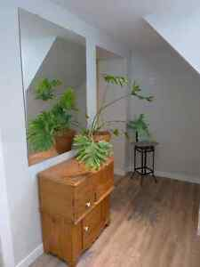 Yonge/Finch - Two Big, Bright, Furnished Rooms London Ontario image 10