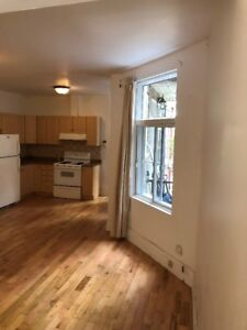 Open concept 3 bdr apt with backyard ideal for students