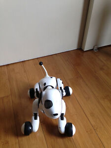 Chien robotise