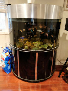 Selling 150gal hemisphere fish tank $800 (all utilities incl.)
