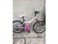 Mountain rinx bike