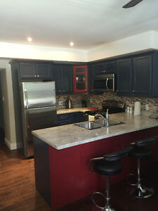 Great renovated 1 bedroom apartment
