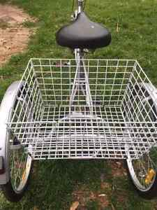tricycle adult silver rola Deer Park Brimbank Area Preview